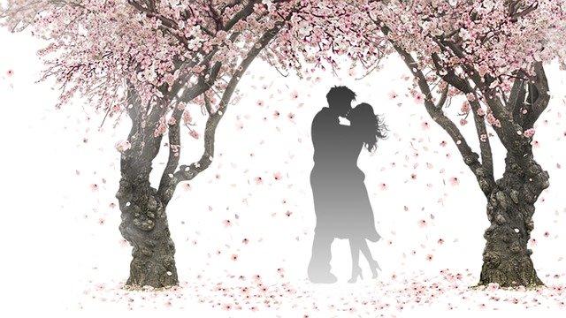Menu St Valentin: le 14 et 15 Février 2020